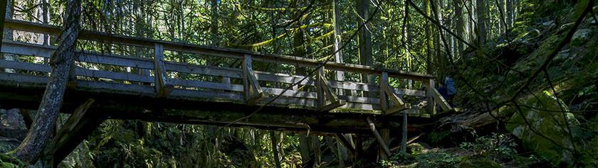 Aamupäivä Cypress Fallseilla