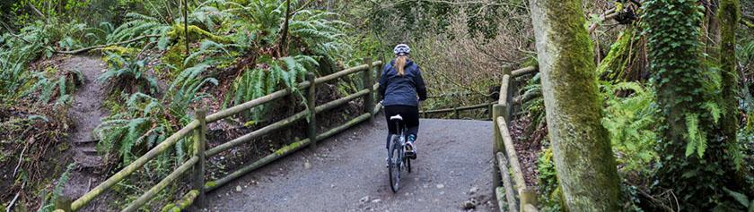 Pyörällä Lynn Creekin vartta