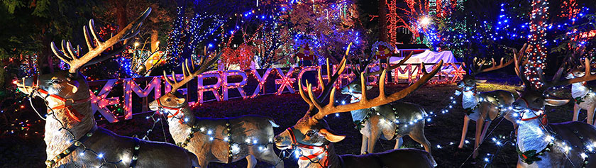 Muistelu Stanley Parkin jouluvaloista