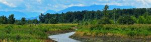 surrey_bend_regional_park_banner